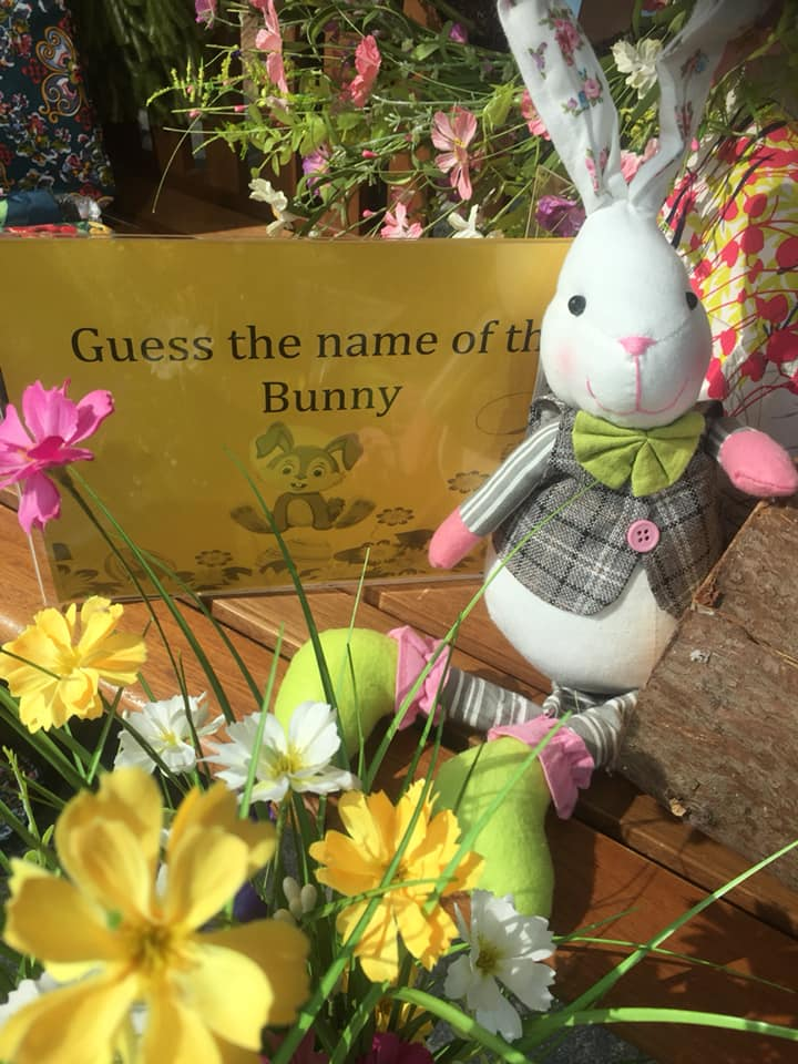 Guess the Name of the Bunny!